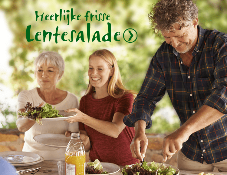 salade-met-haricots-verts-gemengde-zoete-noten-en-mosterdkaas