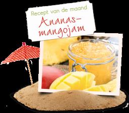 Van Gilse recept